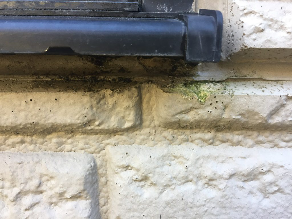 外壁サイディング水切りしたニシミ