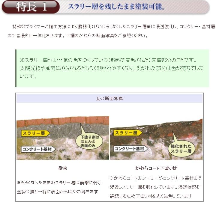 モニエル専用の塗料日本特殊塗料